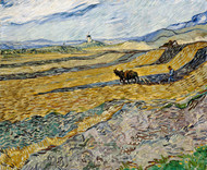 Enclosed Field with Ploughman by Vincent van Gogh