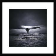 Framed Surf n Whale by Tomasz Zaczeniuk