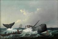 Maritime Art - The Flurry by William Duke, Whaling Print