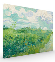 Green Wheat Fields, Auvers 1890 by Vincent van Gogh Stretched Canvas