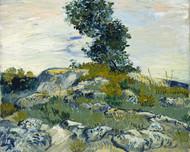 Vincent van Gogh Print The Rocks