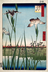 Japanese Print Blooming Irises to Horikiri by Ando Hiroshige 1857 b Art