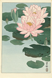 Japanese Print Flowering Water Lily by Ohara Koson b Floral
