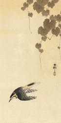 Bird in Down Flight by Ohara Koson Japanese Woodblock