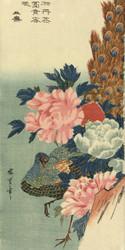 Peacock and Peony Roses by Utagawa Hiroshige Japanese Woodblock