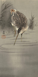 Snip in Water by Ohara Koson and Matsuki Heikichi Japanese Woodblock