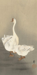 Two Geese by Ohara Koson and Matsuki Heikichi 1900 1930 Japanese Woodblock