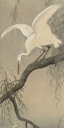 White Heron on Tree Branch by Ohara Koson and Akiyama Buemon Japanese Woodblock