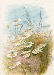 Easter Card Easter Brings The Budding Spring by  Fidelia Bridges Floral Print