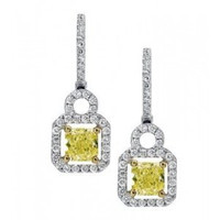 1.51 Ctw White & Fancy Diamond Earrings