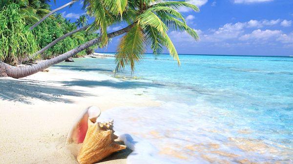 the-bahamas.jpg