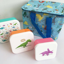 Dinosaur Lunch Bag & Lunch Box Pack. Food on the Go/ School