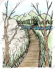 Boardwalk Through Nature