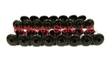 Highway Stars sells the correct set of black wheel well molding screws