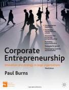 Corporate Entrepreneurship (Entrepreneurship and Innovation in Large Organizations) by Paul Burns, 9780230304031