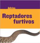 Reptadores furtivos (Slinky Sliders) (Serpiente de cascabel (Rattlesnake)) - 9781634714686 by Kelly Calhoun, 9781634714686