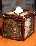 White Birch and Twig Tissue Box Cover