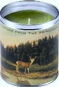 Adirondack Balsam Candle