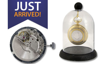 Free Watch Case