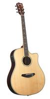 BREEDLOVE SOLO D21CE ACOUSTIC/ELECTRIC GUITAR Guitar World AUSTRALIA