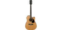 Ibanez PF17ECE LG Acoustic Guitar
