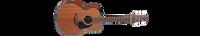 Takamine Mini GX11ME-NS Guitar World Australia Ph 07 55962588