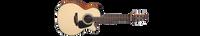 Takamine Mini GX18CE-NS Spruce Top Guitar World Australia Ph 07 55962588