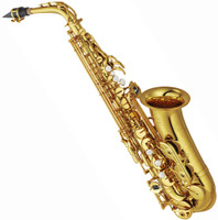 ASHTON SX10 STUDENT ALTO SAXOPHONE (SX-10) Guitar World PH 07 5596 2588