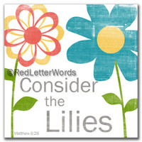 Consider the Lilies - 5x5 Cafe Mount