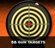 bb guns targets