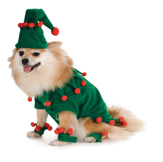 Christmas Elf Pet Costume