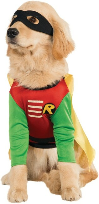 Robin Pet Dog Costume