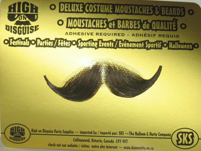 Professor Moustache