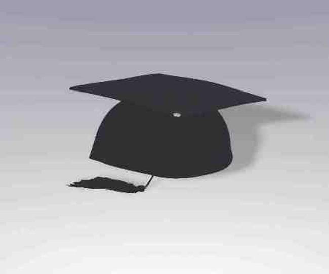 Novelty Felt Graduation Cap