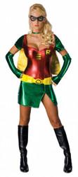 Lady Robin Sexy Costume
