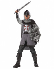 Dragon Slayer Knight Costume
