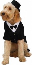 Dapper Dog Tux Costume