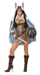 Ladies Sexy Viking Vixen Costume