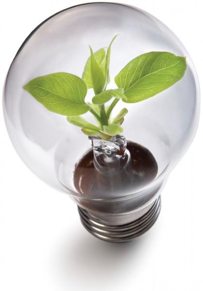 smart.energy.bulb.jpg