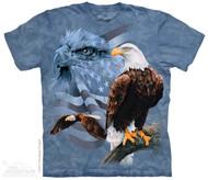 FADED FLAG & EAGLES