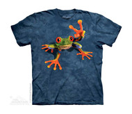VICTORY FROG - CH