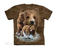 FIND 10 BROWN BEARS - CH