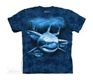 SHARK MOON EYES - CH