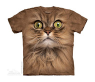 BIG FACE BROWN CAT - CH