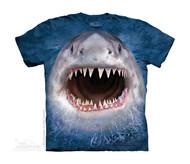 WICKED NASTY SHARK - CH