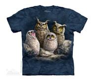 OWL FAMILY - CH