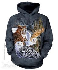 FIND 11 OWLS - HSW