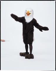 AMERICAN EAGLE COMPLETE