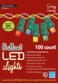 HOLIDAY LIGHTS 100L M5