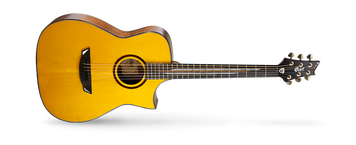 Developed in conjunction with legendary guitarist Frank Gambale, this is a true signature model in that the artist had a great deal of input on each detail of the guitar. Ideal for high-speed soloing, this innovative acoustic-electric guitar also features custom wooden rosette and custom fingerboard inlay designed by Frank Gambale himself. This is a truly unique acoustic guitar as envisioned by a true guitar legend.